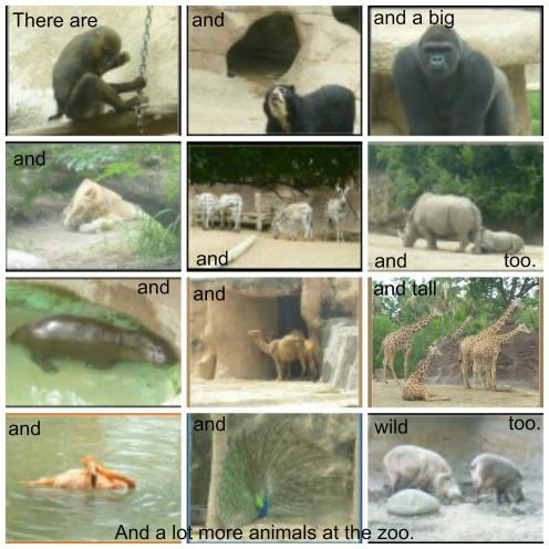 Zoo Poem