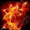 viviana213 profile image