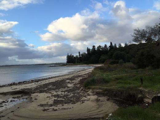 Kurnell's beach