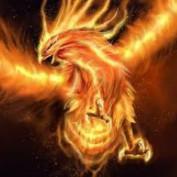feenix profile image