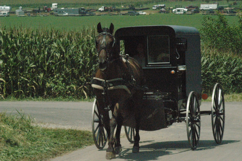 Teach the kids about a simpler life with a trip to Amish country