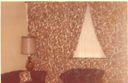 Tiny window made into wall of drapes-big reason couple bought the house