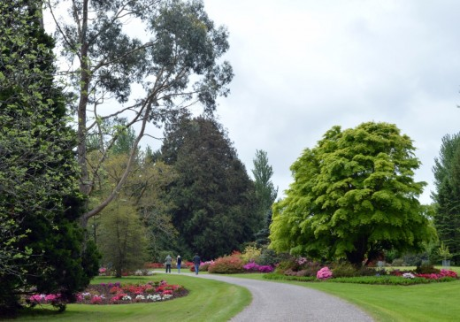 The gardens contain many trails over 60 acres.