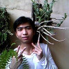 Panhchaka profile image