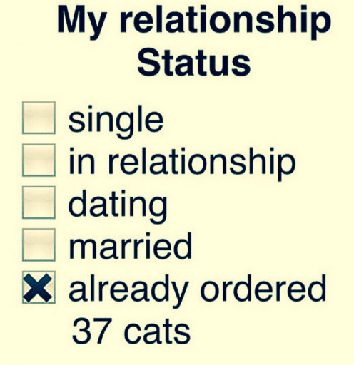 Online dating profile status