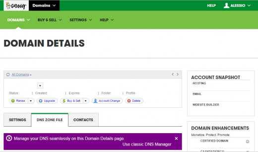 The new GoDaddy DNS control panel
