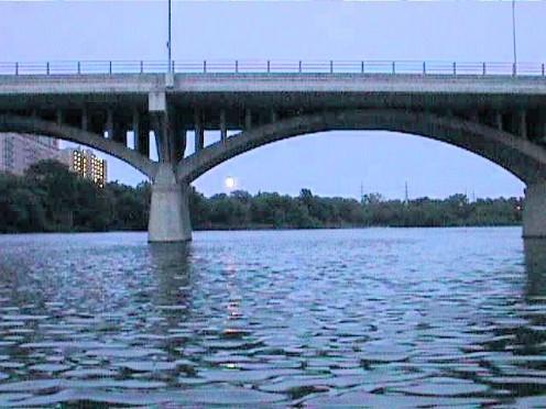 Bat viewing from the Congress Avenue Bridge