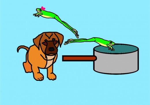 Mr. Frog hops over a very big pot.