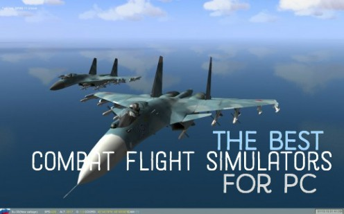 What is the Best Combat Flight Simulator for PC?