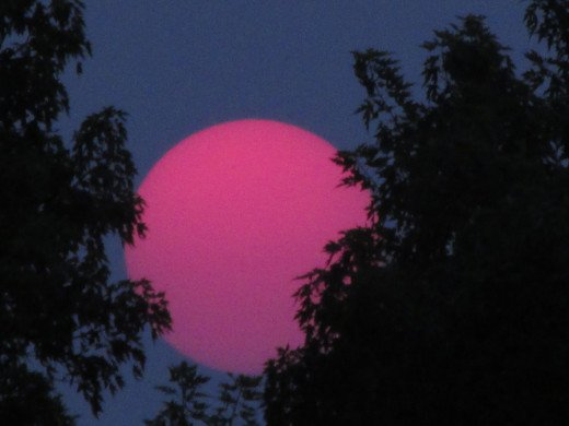 This photo taken June 30, 2015, without a filter shows a neon pink sun setting in the Northwest. I have taken over 5,000 photos of the Sun in the last five years and have never capture an image of it before or since that looked like this.