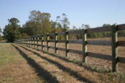 Post and rail fencing for horses, donkeys, and mules.