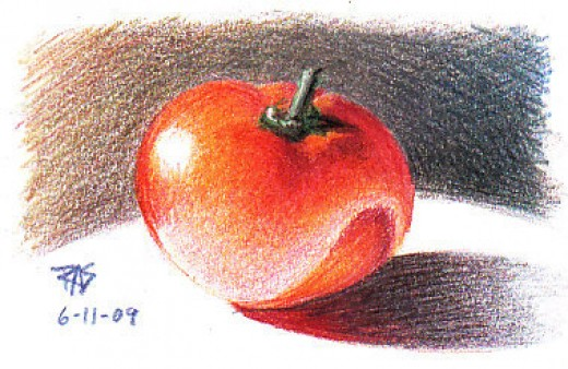 Tomato by Robert A. Sloan, colored pencil on paper.