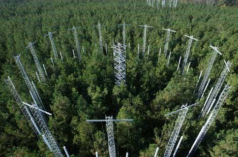 The FACE experiment at Duke University, North Carolina, USA