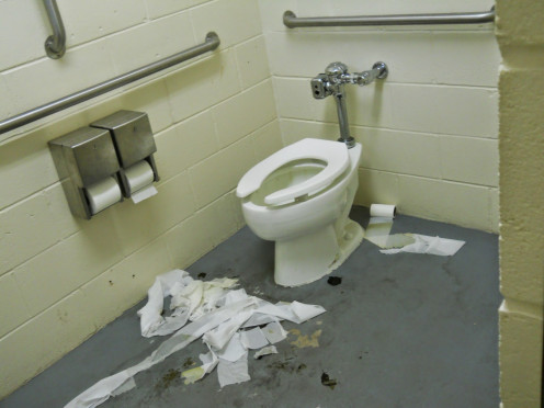 "Honestly. Would you ""sit by idly"" and let a bathroom as filthy as this one go without cleaning."