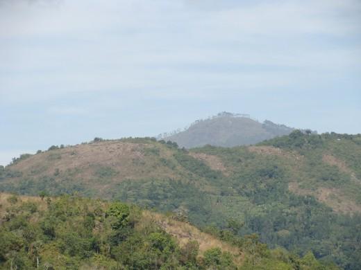THE QUEEN OF MOUNTAINS ' - KODAIKANAL View 1