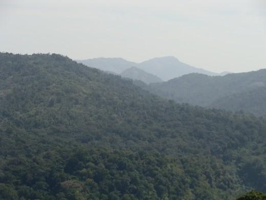 THE QUEEN OF MOUNTAINS ' - KODAIKANAL View 2