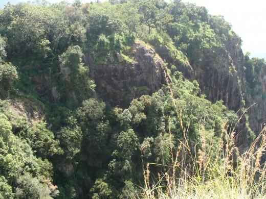 THE QUEEN OF MOUNTAINS ' - KODAIKANAL View 4