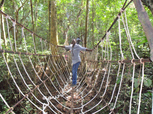 the 'swinging bridge'