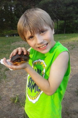 What is the best Turtle for a pet for kids?