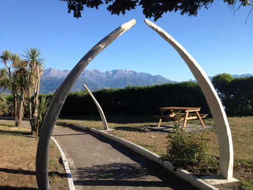 This whale's rib bones make a walk-through archway in New Zealand.