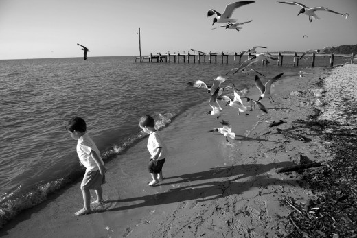 Two boys playing on a Mobile, Alabama beach as a flock of seagulls fly overhead.