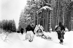 What is the Battle of the Bulge?