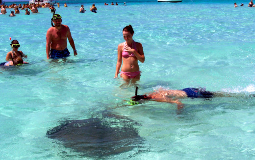 My husband and daughter enjoying swimming with the stingrays.