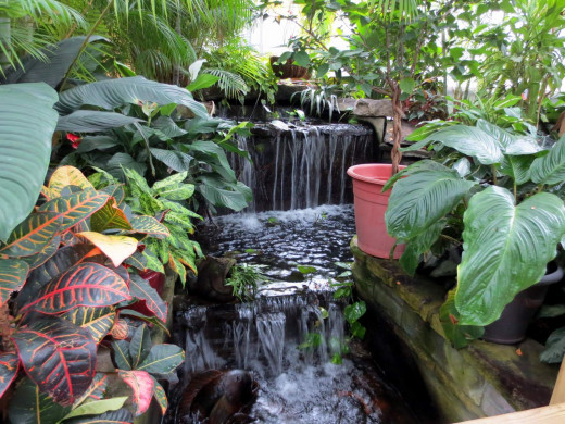 Waterfalls into the fishes' river which runs through the entire greenhouse