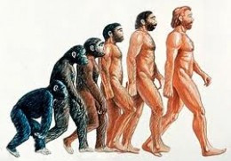 The theory of evolution says; that all living things evolved with time, so, there wasn't a real creator. Therefore, there are reasons to believe that Man slowly evolved and we became what we are today according to the theory of evolution.