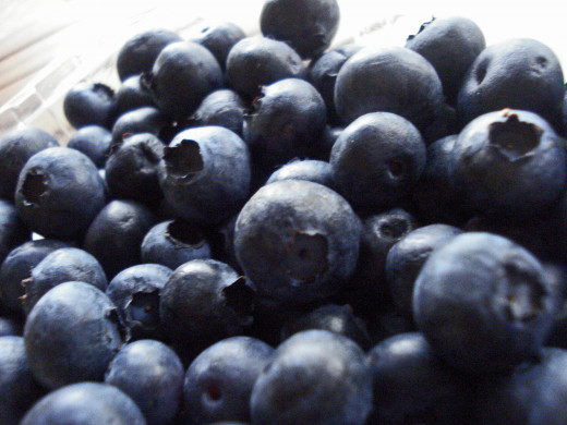 Blueberries are ripe when they go from light blue to dark blue.