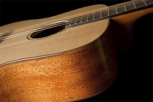 Washburn WD150SW Acoustic Guitar