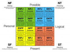 "The Man (or Woman) that We ""are"" Looking For: ENTJ, ""Life's Natural Leaders"""