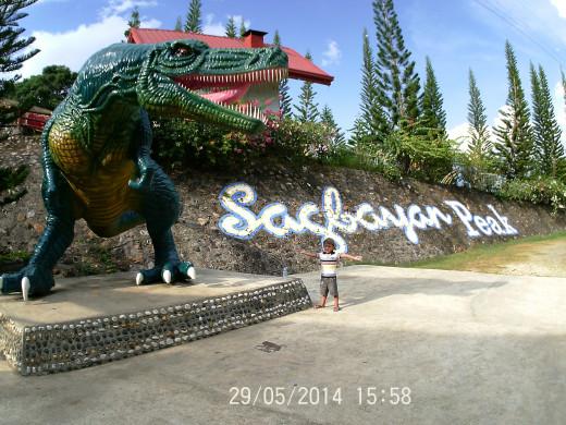 The Dinosaur in Sagbayan.