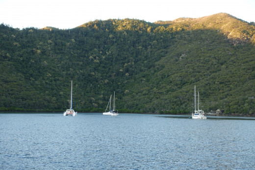 Yachts on mooring buoys in Butterfly Bay