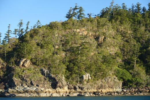 Shore at Tongue Bay