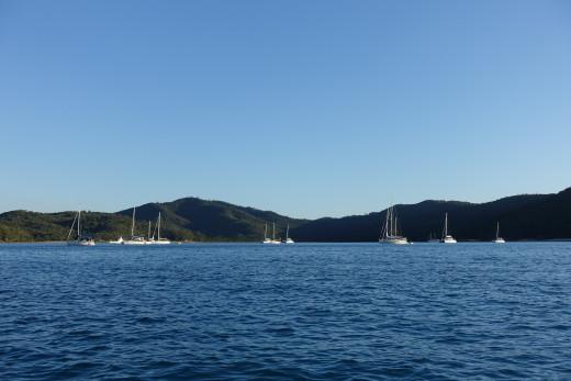 Yachts on buoys in Tongue Bay
