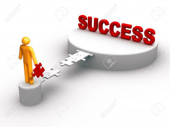 How to be a Sucessful Domainer