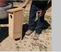 Do It Yourself: Wood Duck Nesting Box