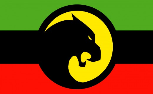 The flag of Wakanda
