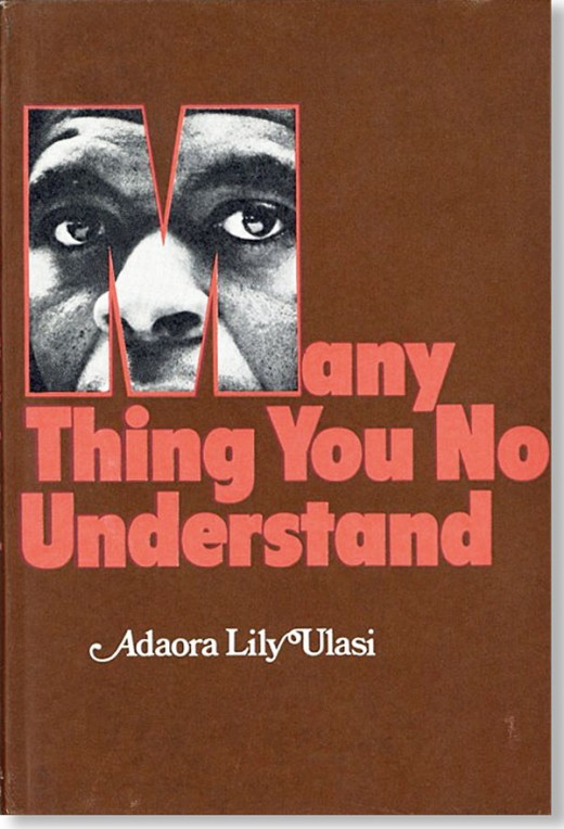 The novel Many Things You don't understand by Adaora Ulasi