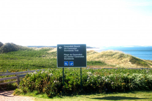 Sand dunes stretch for miles at Cavendish Beach