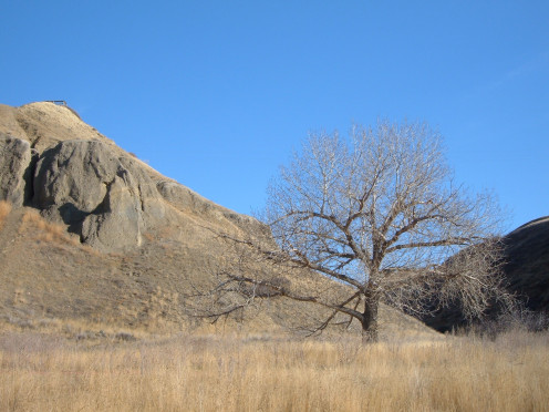 A view upward into a coulee in the Oldman River valley in Lethbridge, Alberta