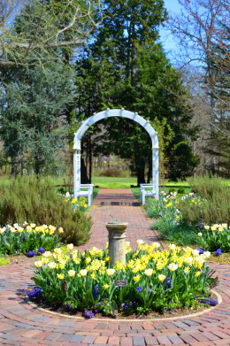 Arents Garden features arches, gazebos and Victorian-style design.