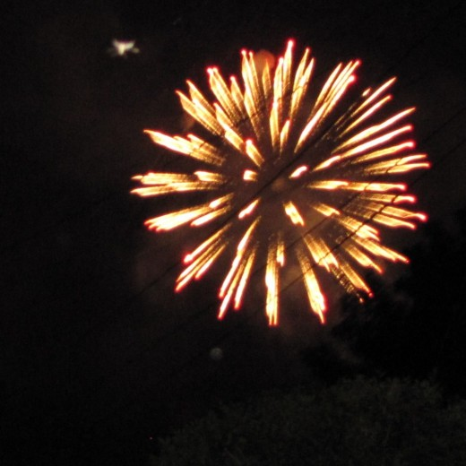 Many celebrate the New Year with fireworks. Did your family do that?