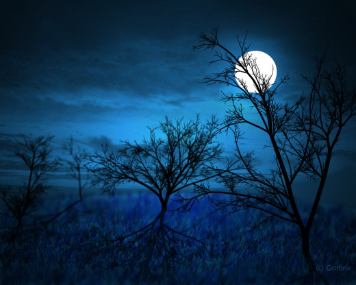 the ever watchful moon