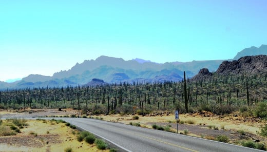 Baja Sur, State Highway 1... the high desert.