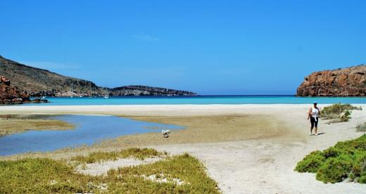Ensenada Grande Bay, Isla Partido...