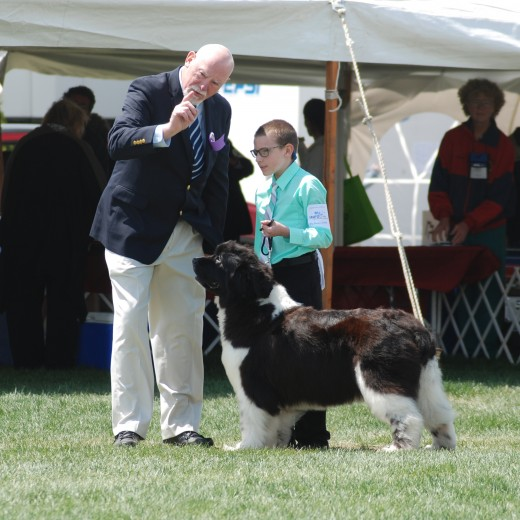 The experience of mentors guides the next generation of breed enthusiasts.