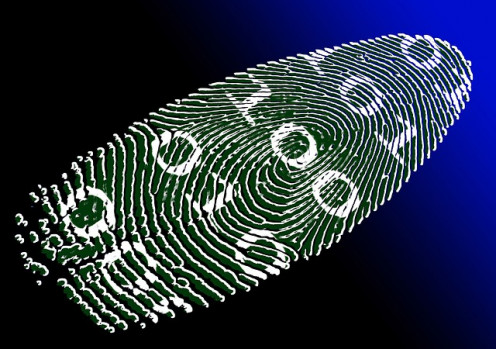Digital Identity can be important in Financial Examination work in computer network data files.