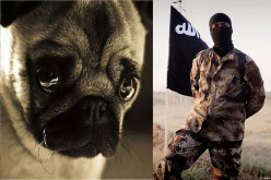 How ISIS (Islamic State) Culture Treats Domestic Animals